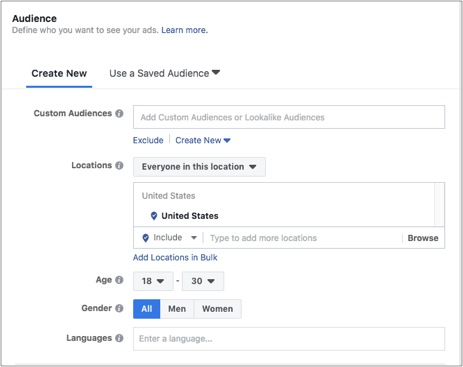 Faceboom campaign naudience