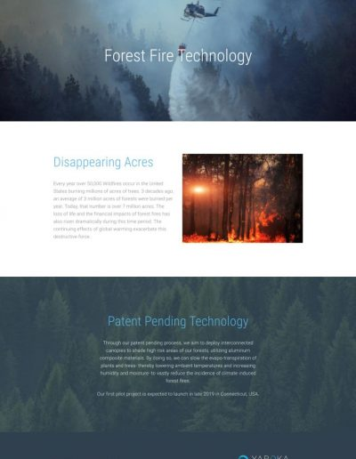 Yaroka Technologies - - Digital Giants - Website Design Portfolio